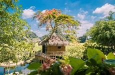 Năm du lịch quốc gia-Lễ hội Hoa Lư: Điểm đến nào 'hot' ở Ninh Bình?