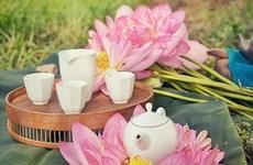 [Photo] Thưởng trà sen sớm bên đầm bách diệp liên tuyệt đẹp mùa Hạ