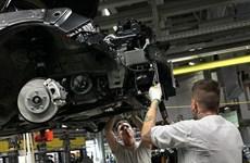 Kinh tế Eurozone: Những đốm sáng ở cuối đường hầm