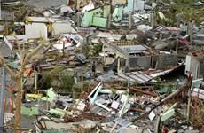 Philippines xác nhận hơn 2.350 người chết vì bão Haiyan