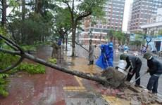Việt Nam là Trung tâm dự báo khí tượng ở Đông Nam Á