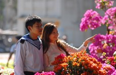 Thành phố Hồ Chí Minh khai trương 131 chợ hoa Tết