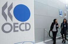 OECD: Phục hồi bền vững là ưu tiên chính sách hàng đầu