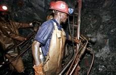 Hơn 200 công nhân mắc kẹt trong mỏ vàng ở Nam Phi