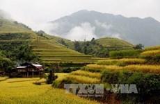 Mexico tổ chức triển lãm ảnh và chiếu phim về Việt Nam