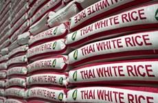 Lượng gạo xuất khẩu của Thái Lan có thể giảm mạnh
