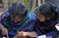 UNESCO kêu gọi nâng cao trình độ học vấn cho nữ giới