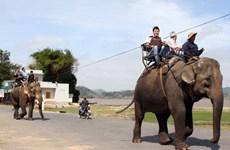 Tăng cường hợp tác đưa du khách Nga đến Đắk Lắk