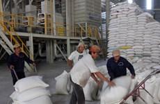 Lãi suất cho vay mua tạm trữ thóc, gạo tối đa là 7%