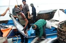 Tái cơ cấu ngành thủy sản theo hướng phát triển bền vững