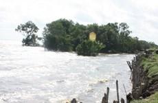 Bình Thuận di dời dân do biển xâm thực nghiêm trọng