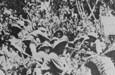 Tái hiện ký ức hào hùng trong chiến dịch Điện Biên Phủ