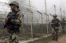 Ấn Độ và Pakistan đấu súng tại Ranh giới kiểm soát ở Kashmir