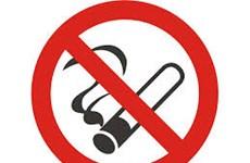 Tổ chức míttinh hưởng ứng Ngày Thế giới không thuốc lá