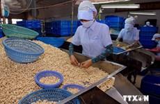 Doanh nghiệp Đồng Nai mở rộng thị trường xuất khẩu nông sản