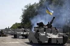 Liên hợp quốc họp khẩn về tình hình nhân đạo ở Đông Ukraine