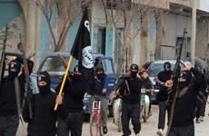 Chuyên gia Nhật: IS có thể làm thay đổi biên giới ở Trung Đông