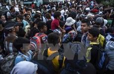 Slovakia phản đối hạn ngạch bắt buộc nhận người di cư
