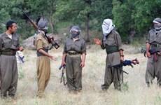 PKK tuyên bố ngừng tấn công trước thềm bầu cử ở Thổ Nhĩ Kỳ