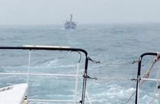 Vẫn chưa có thông tin về 3 thuyền viên Việt Nam mất tích tại Nhật