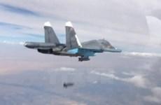Chính phủ Cuba bác bỏ thông tin triển khai binh sỹ tới Syria