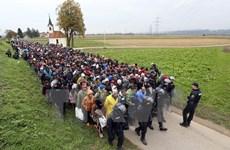 Lãnh đạo EU và 3 nước Balkan họp khẩn về vấn đề người di cư