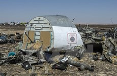 Tổng thống Ai Cập bác bỏ thông tin IS bắn hạ máy bay Nga