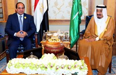 Ai Cập và Saudi Arabia lập Hội đồng điều phối đầu tư, quân sự
