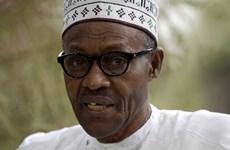 Tổng thống Nigeria thành lập nội các sau 6 tháng nhậm chức
