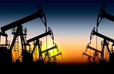 Giá dầu Brent lại đi xuống trước thềm cuộc họp của OPEC