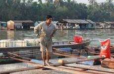 Cá chết hàng loạt trên sông Đồng Nai: Nước không đạt quy chuẩn