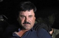 Mexico sẵn sàng dẫn độ tên trùm tội phạm El Chapo sang Mỹ