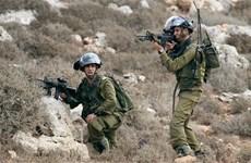 Israel bắt đầu xây dựng tường rào dọc biên giới giáp Jordan
