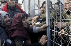 Macedonia đóng cửa biên giới với Hy Lạp để ngăn chặn người di cư