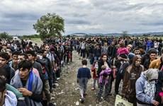 Khoảng 1/3 dân Đức muốn đóng cửa biên giới với người tị nạn