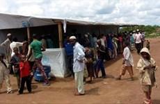 Hàng nghìn người Nigeria hồi hương sau khi Boko Haram bị đẩy lùi