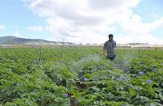 Bổ sung hơn 414.000 USD hỗ trợ chương trình xây dựng nông thôn mới
