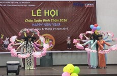 Nâng cao hiệu quả sinh hoạt cộng đồng người Việt ở nước ngoài