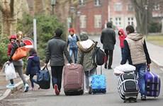 Đức lên án hành động kỳ thị người nước ngoài ở bang Sachsen