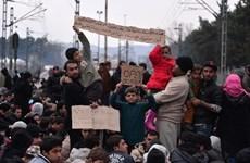 EC quan ngại việc Macedonia dùng hơi cay đẩy lui người di cư