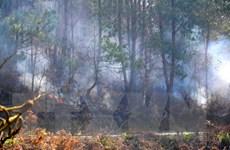 Yên Bái: Vẫn chưa khống chế được vụ cháy rừng ở Mù Cang Chải