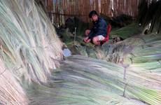 Phó Thủ tướng: Bắc Trà My không được để người dân thiếu đói