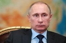 Ông Putin: Vẫn còn sớm để nói về một nhiệm kỳ tổng thống nữa
