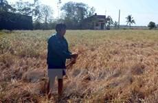 Thủy điện Cảnh Hồng tăng xả nước xuống hạ lưu Mekong từ 21/4