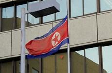 """Triều Tiên: Báo cáo của Mỹ về tình hình nhân quyền là """"lời nói dối"""""""