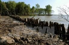 Hỗ trợ 8 tỉnh Đồng bằng sông Cửu Long bị ảnh hưởng lớn vì hạn mặn