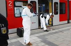 Kẻ tấn công bằng dao ở Đức có vấn đề tâm lý và nghiện hút