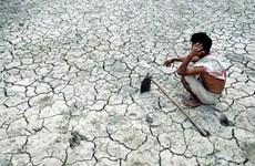 Ấn Độ: Giới chức nhiều bang bị khiển trách vì thờ ơ với hạn hán