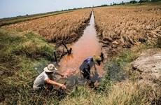 Cứu trợ khẩn 4 tỷ đồng cho người dân vùng hạn, xâm nhập mặn