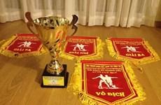 Sôi nổi Giải bóng đá thường niên Hội thanh niên Việt Nam tại Thụy Sĩ